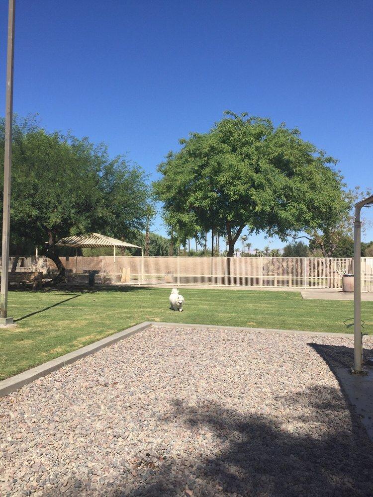 Dog Park in Palm Springs