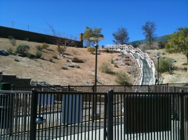 Dog Park in Palm Desert